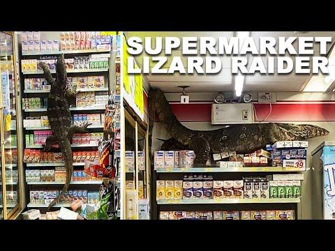 HUGE-Monitor-Lizard-Destroys-Supermarket-Shelves