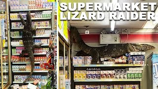 HUGE Monitor Lizard Destroys Supermarket Shelves