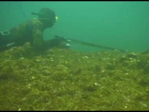 Spearfishing Dog tooth Snaper in Baja