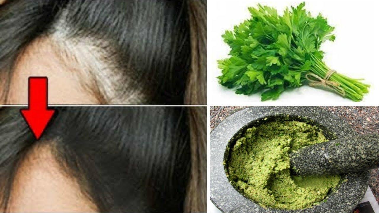 OMG! Stop Hair Fall and GROW YOUR HAIR THICKER NATURALLY |  Hair Fall Formula