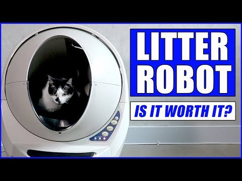 Litter Robot Unboxing & Reaction (AND $25 OFF!)