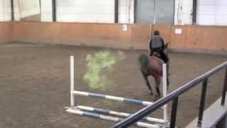 Horse Passing Green Gas : BOOOMM  !!  LOL