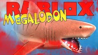 MEGALODON MEGA HAAI !! | Roblox SharkBite