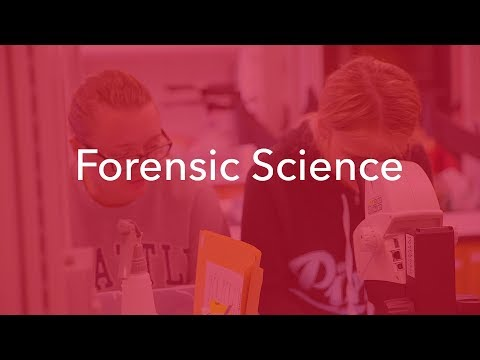 Forensic Science | Maryville University