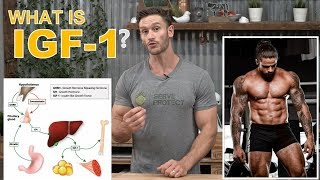 What is IGF-1? How the Growth Factors Build Muscle by Thomas DeLauer - Deer Antler Velvet Extract