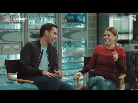 Grey's Anatomy Season 14 Cast Interviews - Canal Sony