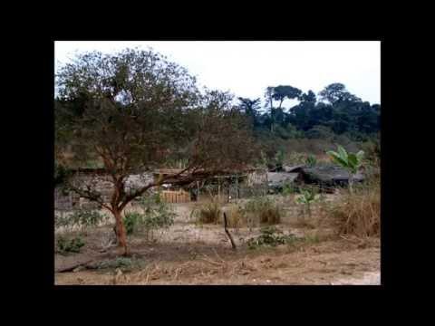 2004 - Um dia na Mata do Maiombe, Cabinda, com o Bispo D. Paulino Madeca