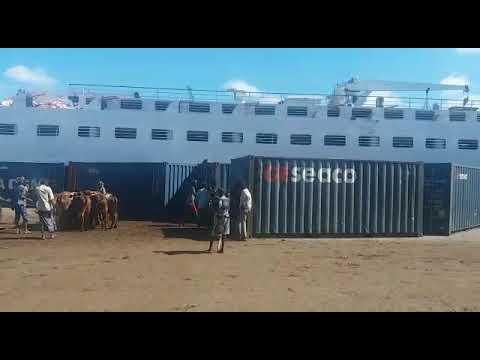AFRICAN SHIPPING LINE - MOGADISHU, SOMALIA