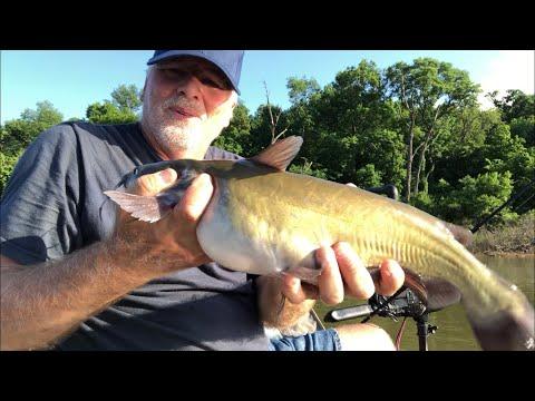 Catfishing| Spencer Creek
