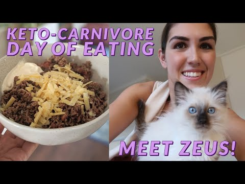 What I Eat in a Day on a HIGH ANIMAL FOOD DIET thumbnail