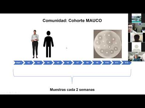 Sobre Fagoma y bacterio (fagos), como alternativa terapéutica