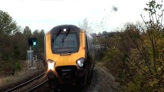 Pigeon Hit By Train and Explodes Spectacularly HD