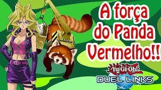 A força do Panda Vermelho!!