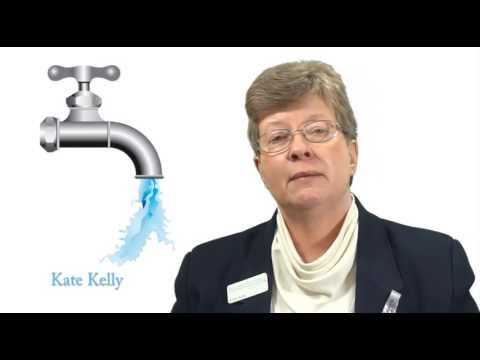 Kate Kelly : The Business Plumber