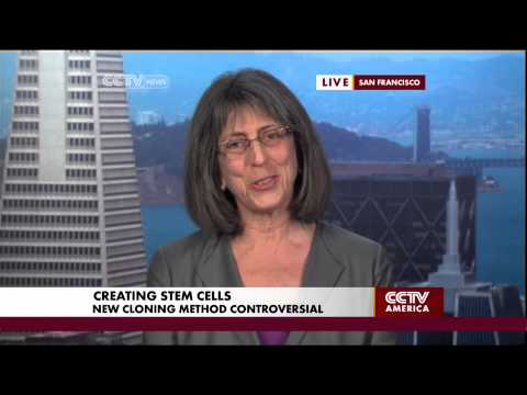 Panel on the Ethics of New Stem Cell Cloning Method