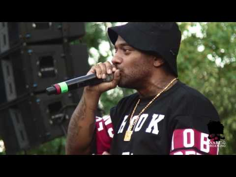 Mobb Deep live at Queensbridge Park on July 17, 2014