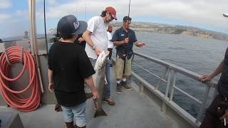 Local SoCal coast fishing this week on 6/19 and 6/21/18