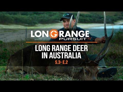 Long Range Pursuit | S3 E2 Long Range Deer in Australia