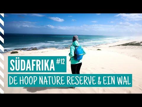 Tag 383 - Der schönste Ort in ganz Südafrika! Südafrika #12