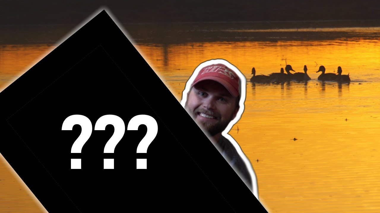 Download I've NEVER Seen DECOYS Like This Before!   Fold Up Decoy Unboxing