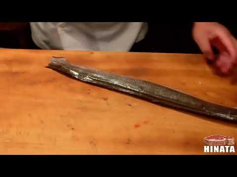 How To Clean And Prepare Pike Eel Dishes