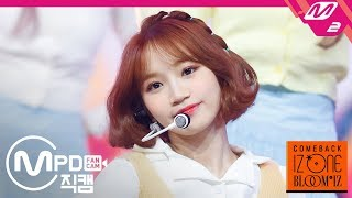 Download lagu [MPD직캠] 아이즈원 김채원 직캠 4K '해바라기(Sunflower)' (IZ*ONE Kim Chaewon FanCam) | @COMEBACK IZ*ONE BLOOM*IZ