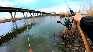 Эти Дикие Рыбы Рвут Поводки Ловля Леща на Реке с Ночёвкой на Фидер в Марте Рыбалка 2021