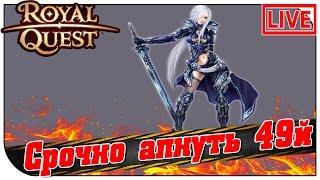 Royal Quest СТРИМ 😇 Срочно апнуть 49й (21:00мск)
