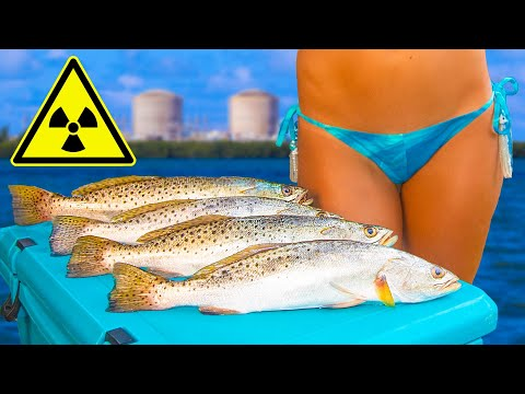 RADIOACTIVE!? Nuclear Power Plant Fishing Catch Clean Cook- Speckled Sea Trout