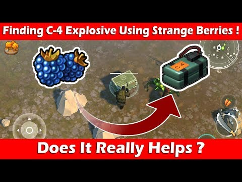 Finding C-4 Explosive Using Strange Berries! Does It Helps? Last Day On Earth Survival