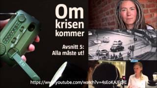 Ekonomisk kollaps i Sverige - Varning till känsliga tittare
