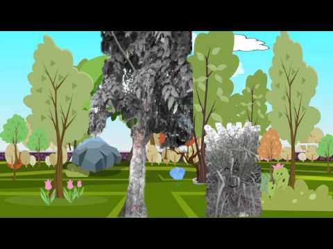 นิทานอีสปเรื่อง ต้นโอ๊ค กับ ต้นอ้อ