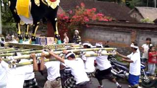 Video Bali Cremation Ceremony Procession 1 download MP3, 3GP, MP4, WEBM, AVI, FLV Agustus 2018