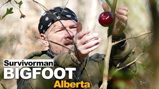 Survivorman Bigfoot   Episode 1   Alberta   Les Stroud   Todd Standing