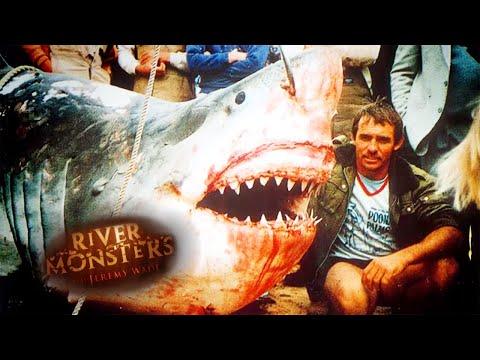 Australia's Deadliest Sharks  - River Monsters