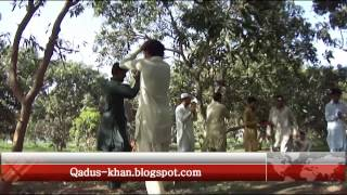 Waziristan New Songs 2014 March - Waheed Achakzai Pashto Songs