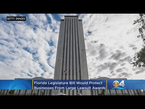 Florida Legislature Bill Would Protect Businesses From Large Lawsuit Awards