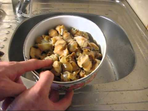 Как приготовить мидии и рапаны на сковороде