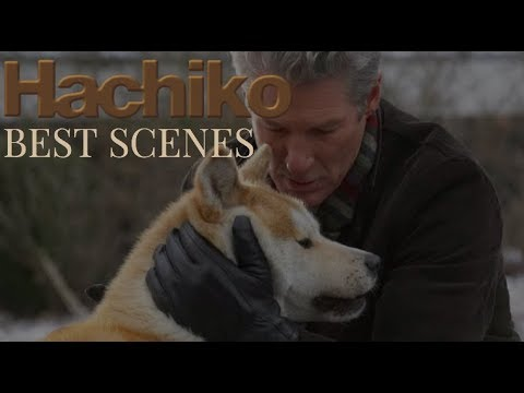 HACHIKO- Try not