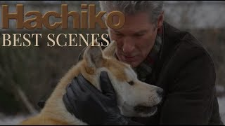 HACHIKO- Try not to cry