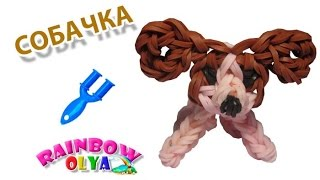 СОБАЧКА из резинок на рогатке без станка | Dog Rainbow Loom Charm