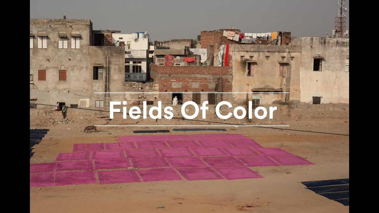 fields of color - Fields Of Color