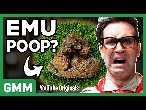 Guess That Poop Challenge