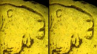 HIGH MAGNIFICATION 3D IMAGING IN ARCHEOLOGY: PREHISTORIC ART CASTS, HORSE GRAFFITO