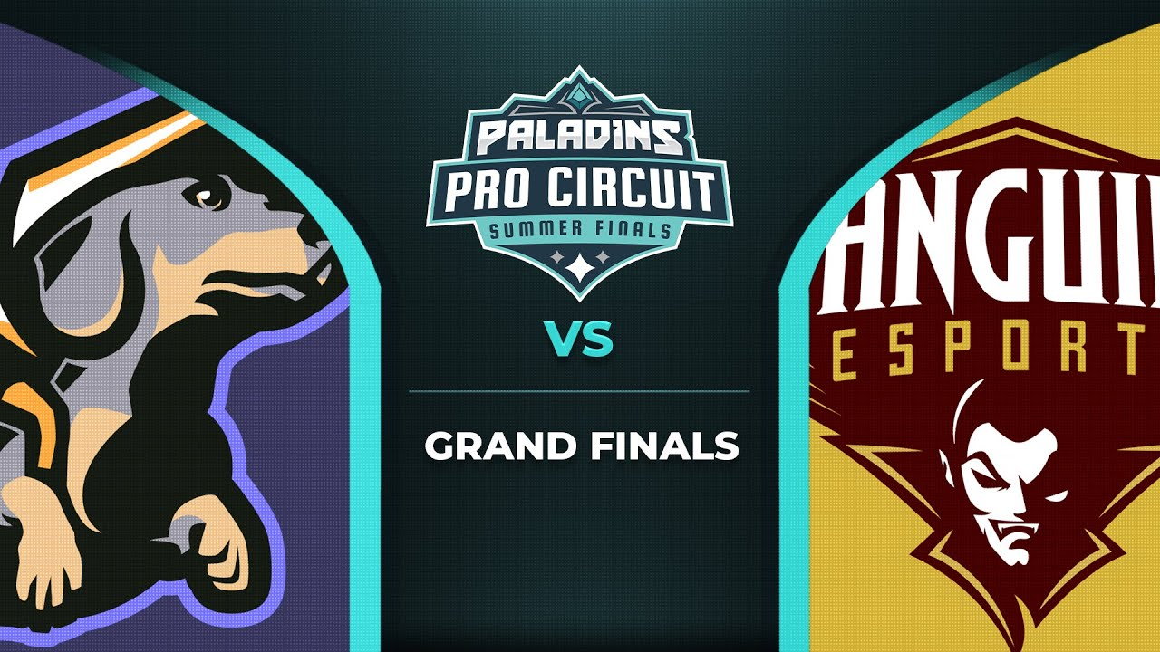 PPC 2020 SUMMER FINALS - GRAND FINALS: TEAM PROJECT vs SANGUINE