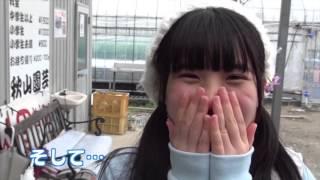 773% 『Rev.from DVLのホーカゴ 』DVD-BOX 仕様:DVD4枚組BOX(各...