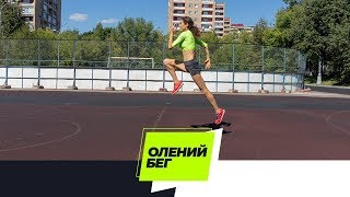 СБУ | Олений бег
