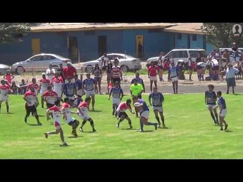 Festival San Felipe 2017 Chunchos vs Toros de Quillota 1