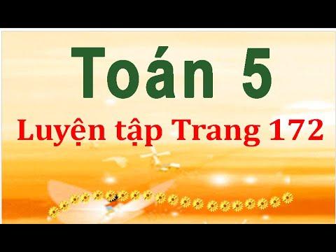 Môn toán lớp 5  Luyện tập Trang 172