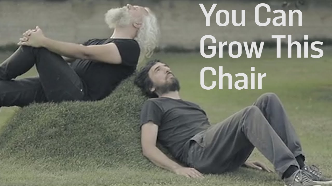 You Can Grow This Chair In Your Garden